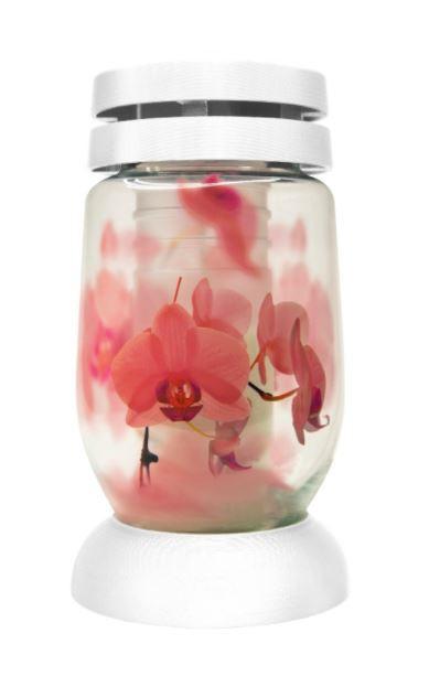 Poze Candelă sticlă Bolsius 3L-ORH