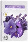 Poze Lumânare pastilă - Lavandă-Violetă P15-186