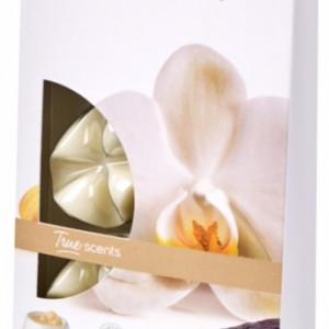 Cipsuri din parafina parfumata - Vanilla (Vanilie)