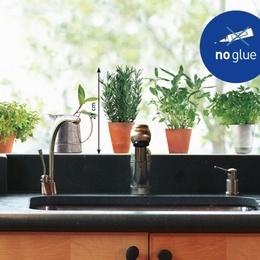 Sticker de geam ''Plante aromatice I''