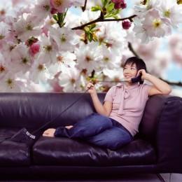Fototapet floral Primavara