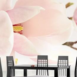 Fototapet floral Magnolia maiestuoasa