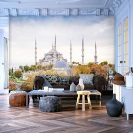 Fototapet - Hagia Sophia - Istanbul