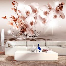 Fototapet vlies Orhidee delicata in stropi de apa