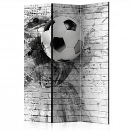 Paravan - Dynamic Football [Room Dividers]