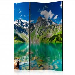 Paravan - Mountain lake [Room Dividers]