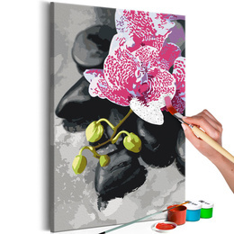 Pictura pe numere - Orhidiee Roz