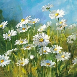 Tablou decorativ ''Margarete in iarba'' inramat