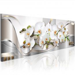 Tablou - Orchids II