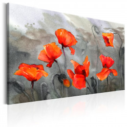 Tablou - Poppies (Watercolour)
