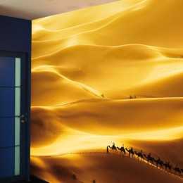 Fototapet vlies cu peisaj Dune aurii