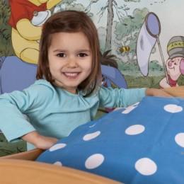 Fototapet copii cu Winnie, Acasa la Pooh 368x127 cm