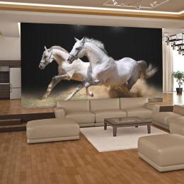 Fototapet - Galloping horses on the sand