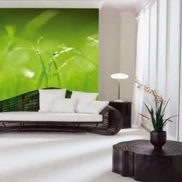 Fototapet Verde