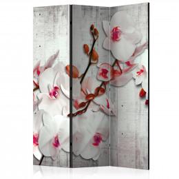 Paravan - Concrete Orchid [Room Dividers]