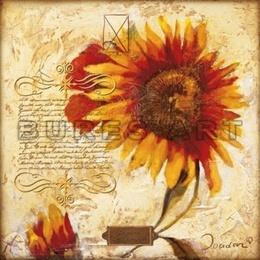 Poster Colaj cu floarea soarelui I