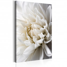 Tablou floral Dalia alba