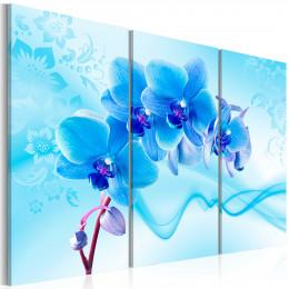 Tablou Orhidee eterica albastra