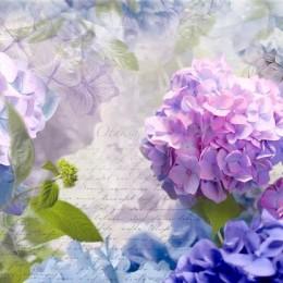 Fototapet floral Otaksa