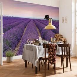 Fototapet vlies peisaj Provence