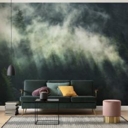 Fototapet Atmsofera tainica cu ceata peste padure
