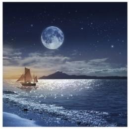 Fototapet Pe mare sub clar de luna