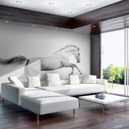 Fototapet - White gallop
