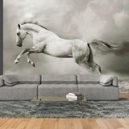 Fototapet - Wild Stallion