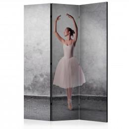 Paravan - Ballerina in Degas paintings style [Room Dividers]