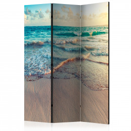 Paravan - Beach in Punta Cana [Room Dividers]