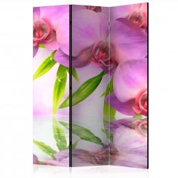 Paravan - Orchid Spa [Room Dividers]