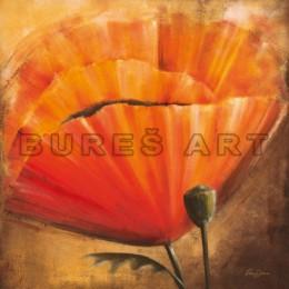 Poster cu flori Mac in soare II