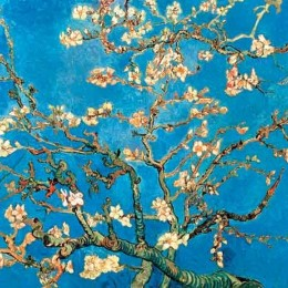 Poster Van Gogh Ramura de migdal inramat