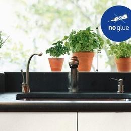 Sticker de geam ''Plante aromatice II''