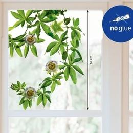 Sticker de geam ''Floarea pasiunii''