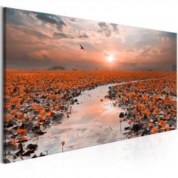 Tablou canvas Lac cu nuferi la apus