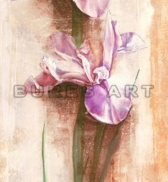 Tablou decorativ ''Irisi'' inramat