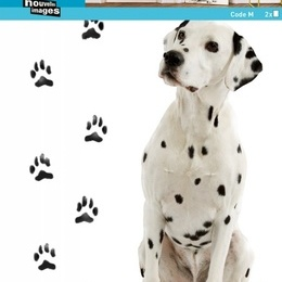 "Sticker decorativ ""Dalmatieni"""