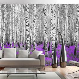 Fototapet lavabil Fantezie violeta in padurea de mesteceni