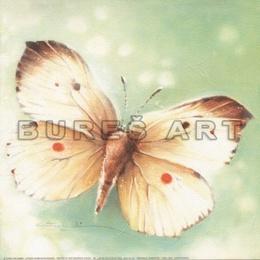Tablou Fluture diafan II