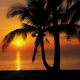 Fototapet cu peisaj exotic Rasarit de soare la mare