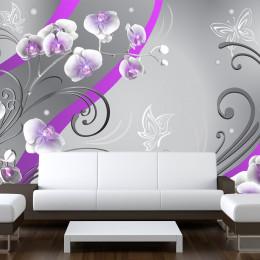 Fototapet - Purple orchids - variation