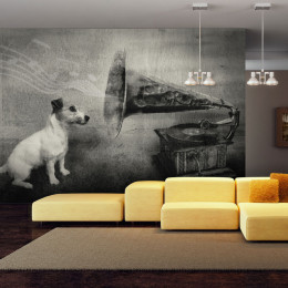 Fototapet - Dog's melodies