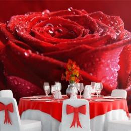 Fototapet floral Trandafir cu roua