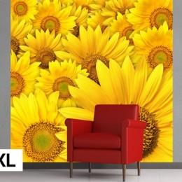 Fototapet vlies Floarea soarelui