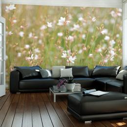Fototapet - White delicate flowers