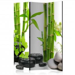 Paravan - Bamboos and Stones [Room Dividers]