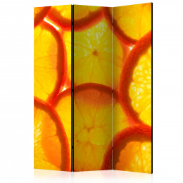 Paravan - Orange slices [Room Dividers]
