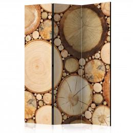 Paravan - Wood grains [Room Dividers]
