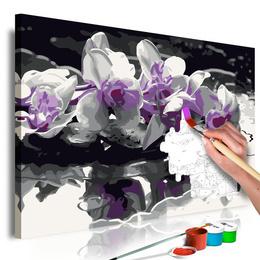 Pictura pe numere - Orhidee Mov (Fundal Negru si Reflectie in Apa)